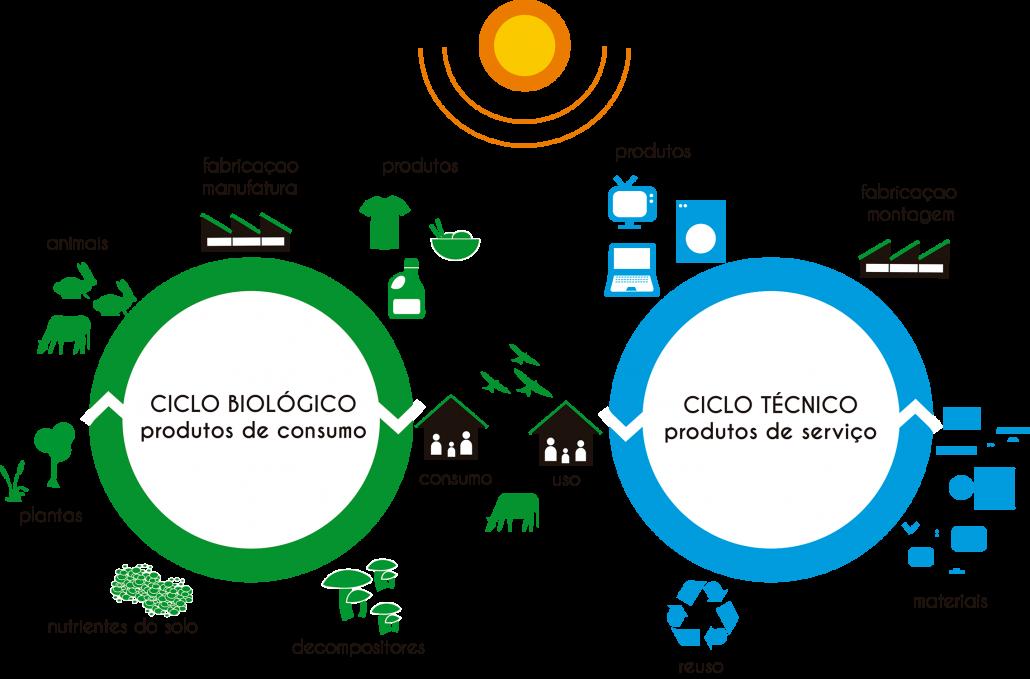ciclos-bio-tecnico_menor